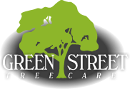 Green Street Tree Care