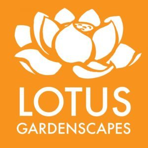 2013Lotus-White_on_Orange-Square_web_RGB-01-e1454959106421-300x300